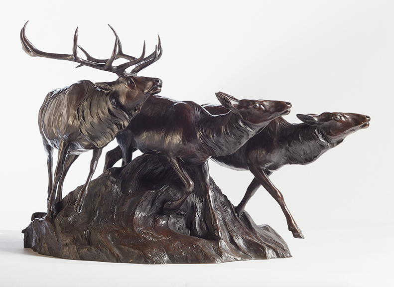 Animals: Wild and Captured in Bronze 3