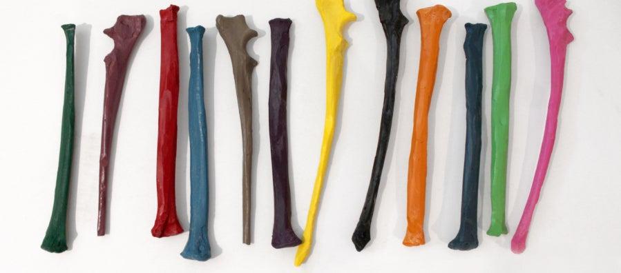 Crayons case in the shape of coyote bones by RYAN! Feddersen