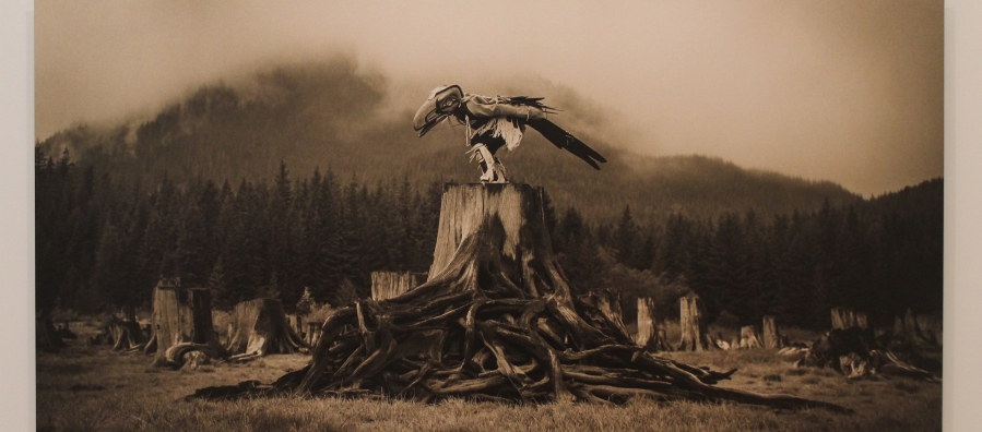 """Photograph of """"Raven Tells His Story in the Fog"""" by artist Zoë Marieh Urness."""