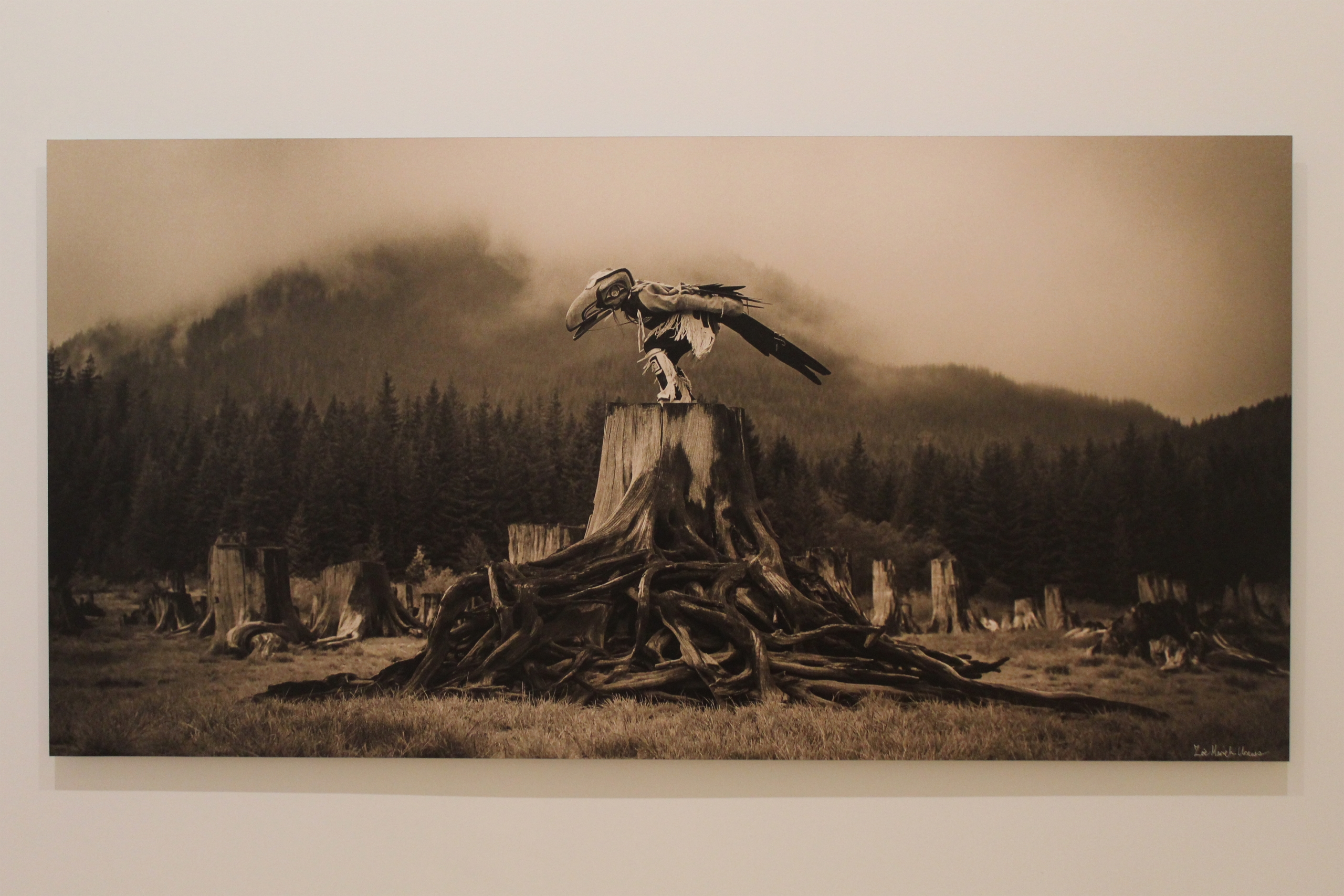 """Recent Acquisitions - Zoë Urness """"Raven Tells His Story in the Fog"""""""