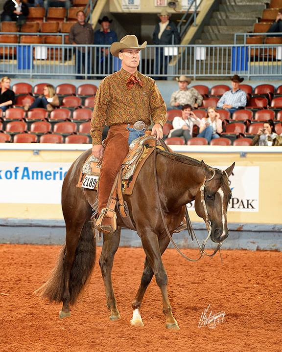 Photograph of incoming TAM board president Jeff Williams riding a horse